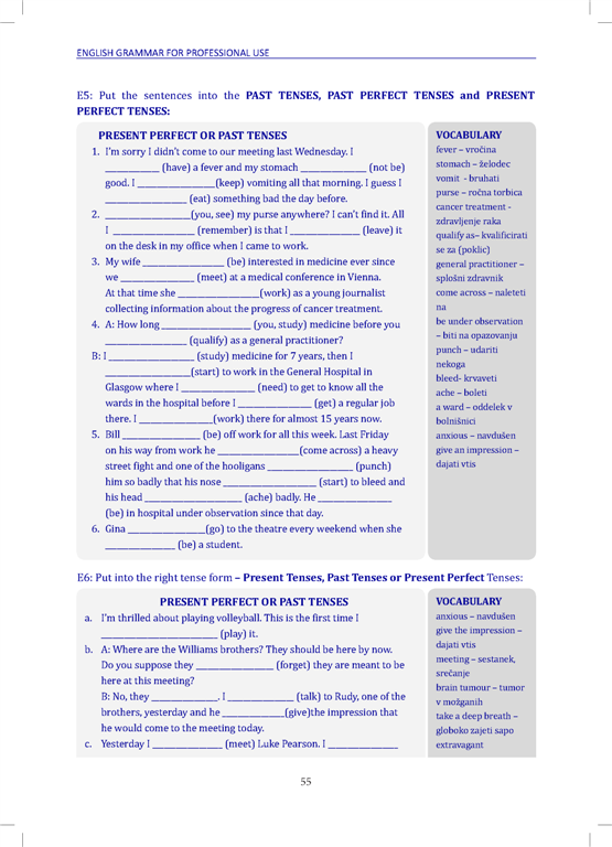 English Grammar for Professional Use: Explanation, Examples and Exercises with answer Key - stran 55